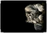 Обложка на автодокументы с уголками, Белый тигр