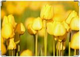 Обложка на паспорт с уголками, Желтые тюльпаны