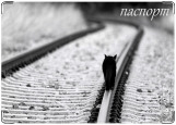 Обложка на паспорт с уголками, Только черная кошка...