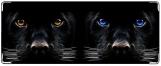 Кошелек, Panther