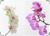 Блокнот, Орхидея