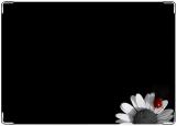 Блокнот, Цветок