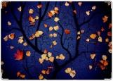 Блокнот, Осень, любовь