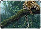 Обложка на паспорт с уголками, Леопард