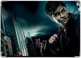 Блокнот, Гарри Поттер