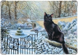 Блокнот, Черный кот