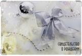 Обложка для свидетельства о рождении, бантик
