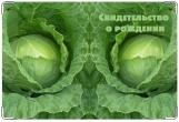 Обложка для свидетельства о рождении, Капуста