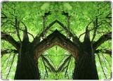 Блокнот, Дерево