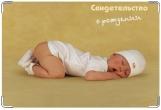 Обложка для свидетельства о рождении, Кроха