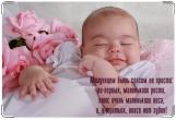 Обложка для свидетельства о рождении, Наше счастье