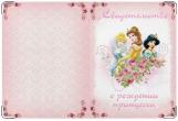 Обложка для свидетельства о рождении, Принцесса