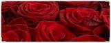 Обложка на зачетную книжку, Розы