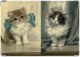 Обложка на медицинскую книжку, котята