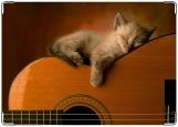 Обложка на медицинскую книжку, котёнок на гитаре