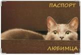Обложка на ветеринарный паспорт, Из шкатулки