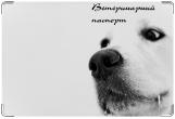 Обложка на ветеринарный паспорт, Белый пес.