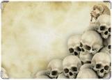Обложка на медицинскую книжку, черепушки