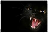 Обложка на ветеринарный паспорт, Черная кошка