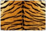 Обложка на ветеринарный паспорт, Тигр.