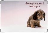 Обложка на ветеринарный паспорт, Провинился