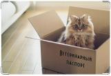 Обложка на ветеринарный паспорт, В коробке