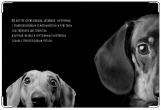 Обложка на ветеринарный паспорт, Такса