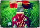 Блокнот, Гитара на траве