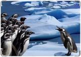 Обложка на трудовую книжку, Трудовая пингвины