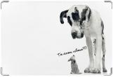 Обложка на ветеринарный паспорт, и ты тоже собака?