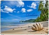 Блокнот, Пляж