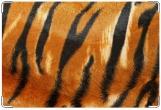Обложка на ветеринарный паспорт, tiger
