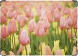 Блокнот, Тюльпаны
