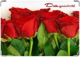 Обложка на автодокументы с уголками, Красные розы