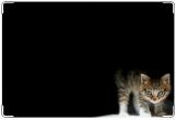 Обложка на ветеринарный паспорт, ветеринарный паспорт