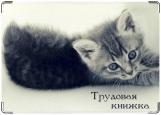 Обложка на трудовую книжку, Котенок