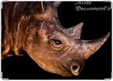 Обложка на автодокументы с уголками, носорог