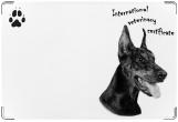 Обложка на ветеринарный паспорт, Вет.паспорт