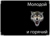 Обложка на паспорт, волк