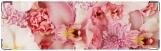 Визитница/Картхолдер, Орхидеи