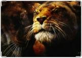 Обложка на паспорт с уголками, Тигры