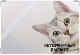 Обложка на ветеринарный паспорт, котик