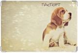Обложка на ветеринарный паспорт, Щенок