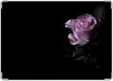 Блокнот, роза