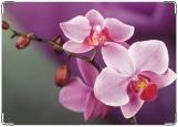 Обложка на паспорт с уголками, Орхидея