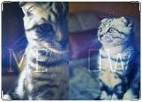 Обложка на паспорт, meow