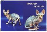 Обложка на ветеринарный паспорт, сфинкс