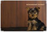 Обложка на ветеринарный паспорт, York puppy