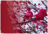 Обложка на трудовую книжку, весна