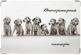Обложка на ветеринарный паспорт, Долматинцы